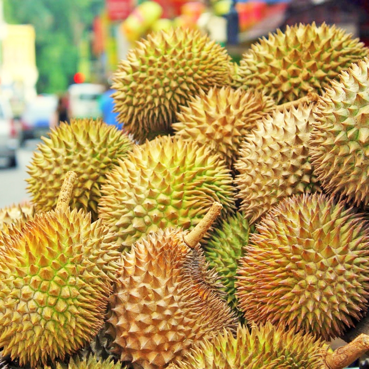 Durian.Fruit_